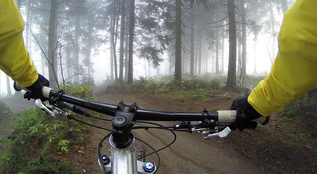 řídítka, projížďka v lese